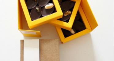 Mon jardin chocolaté - Boîte de 12 chocolats Bio Pralinés