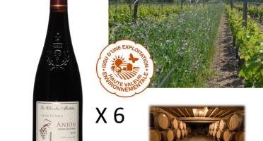 Le Clos des Motèles - AOC Anjou Rouge 2018 : Cuvée Sainte-Verge (6 Bouteilles)