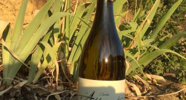 Depuis des Lustres - Comptoir Corse - Domaine de Tremica - cuvée Abbramante blanc 2020