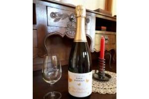 Domaine Sophie Joigneaux - Vin Mousseux Blanc de Blancs Brut  1 Bouteille