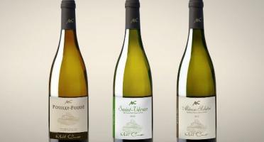 Michel Camusat - Coffret Macon Solutré AOC 2018, Saint-Véran AOC 2019 et Pouilly Fuissé AOC - 3 bouteilles