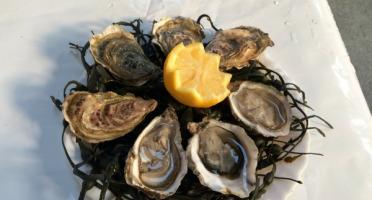 Les Huîtres Chaumard - Huîtres de Paimpol N°4 - bourriche de  50 pièces (4 douzaines)