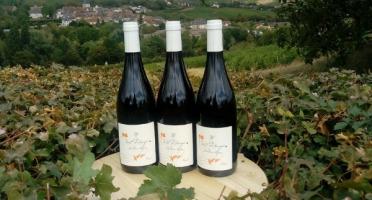 Sancerre Doudeau-Leger - Vent d'Ange - Vin de Pays du Val de Loire Rouge IGP 2019 - 3 Bouteilles
