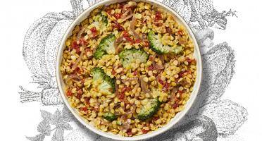 La Brouette - Pour 1 Pers, Dahl De Lentilles Corail Aux Petits Légumes Et Aux Épices