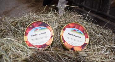Les Glaces de la Promesse - Sorbet Fraise Et Sorbet Citron 2x 500 Ml