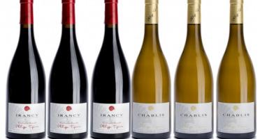 Domaine TUPINIER Philippe - Lot de 2 vins AOC : Chablis 2018 et Irancy 2017 - 6 Bouteilles
