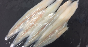 AQUADIS NATURELLEMENT - Filets De Merlan Sans Peau Sans Arêtes