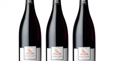 Domaine Jeannin-Naltet - Mercurey Premier Cru Clos L'evêque 2019 - 3 bouteilles