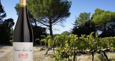 Château Saint Estève d'Uchaux - AOP Côtes du Rhône Rouge Tradition 2018