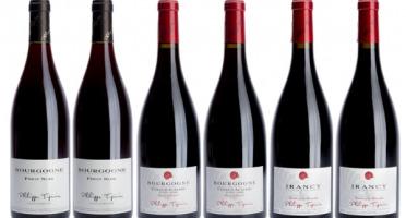 Domaine TUPINIER Philippe - Lot De 3 Vins Rouges : Bourgogne, Côte D'Auxerre, Irancy AOC - 6 Bouteilles