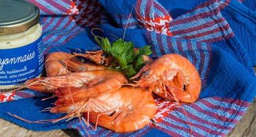Ô'Poisson - Crevettes Cuites Sauvages (grosses) - Lot De 300g