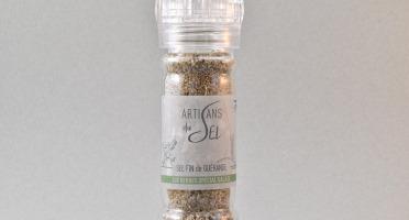 Artisans du Sel - Moulin à Sel Spécial Salade 80g