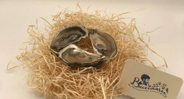 Buccimarée - Huître Creuse De Pleine Mer Naturelle N°3- 1kg
