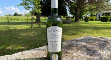 Vignobles Fabien Castaing - AOC Bergerac Blanc Sec Domaine de Moulin-Pouzy Tradition 2019 - 6x75cl