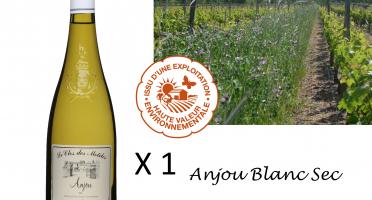 Le Clos des Motèles - Aoc Anjou Blanc Sec 2019: 1 Bouteille