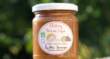 Papilles Sauvages - Chutney Pomme Figue Gingembre Bio