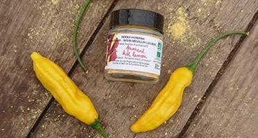 HERBA HUMANA - Piment Hot Lemon - 12g