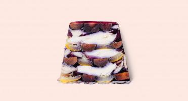 Nicolas VEROT - Terrine de poulette aux carottes violettes et courgettes jaunes