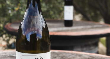 """Domaine Doriane Vidal - Lot De 6 Bouteilles Aoc Côtes Du Roussillon """"dolia 2017"""""""