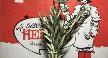 La Boite à Herbes - Feuilles D'olivier Bio - 50g