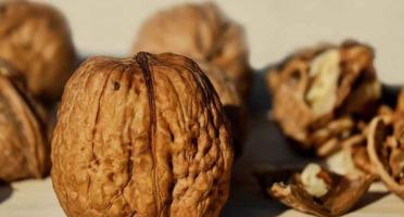Les Vergers De Tailhac - Noix Entières Lara Nouvelle Récolte - 2kg