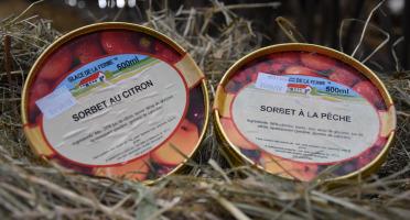 Les Glaces de la Promesse - Sorbet Pêche Et Sorbet Citron 2x 500 Ml