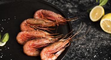 Qwehli - Crevettes sauvages Gambero Rosso - calibre L - 1 Kg