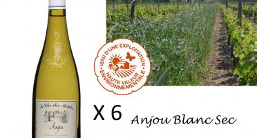 Le Clos des Motèles - Aoc Anjou Blanc Sec 2019: 6 Bouteilles