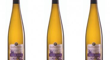 Domaine Rieflé-Landmann - Lot De 3 Bouteilles - Vallée Noble Pinot Gris 2013