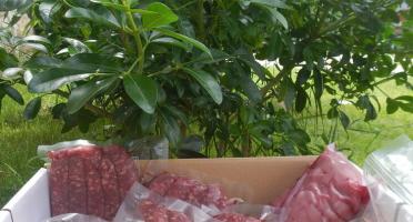 La Ferme de l'Abbaye - [Précommande] Le colis de boeuf Tradition-saucisses de race croisée jersiaise x parthenaise