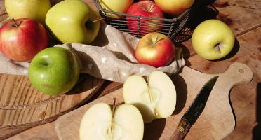 Le Verger de Crigne - Trio De Pommes Bio (moyen Calibre) - 10kg