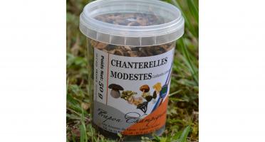 Trapon Champignons - Chanterelles Jaunissantes Sechées - 50 G
