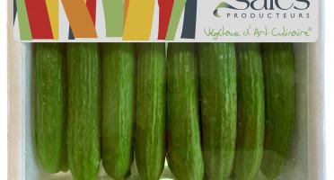 Maison Sales - Végétaux d'Art Culinaire - Mini Concombre - 14 Pièces Minimum