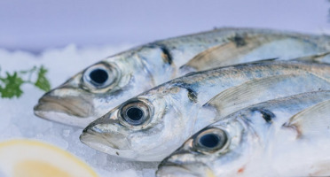 Côté Fish - Mon poisson direct pêcheurs - Gascons 500g