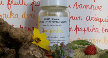 HERBA HUMANA - Gingembre 25g