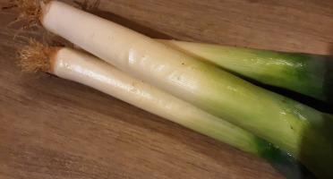 Gourmets de l'Ouest - Poireaux de Saint-Malo