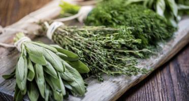 La Boite à Herbes - Panier D'herbes Aromatiques De Saison