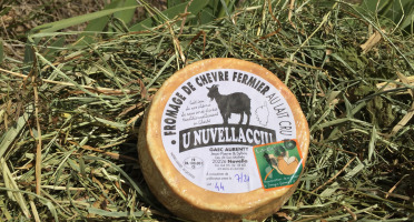 Depuis des Lustres - Comptoir Corse - Fromage de chèvre fermier U Nuvellacciu - 350 g