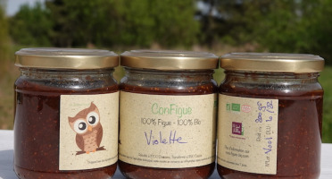 Le Ziboud'Terre - Producteur de figues - 1 Pack ConFigue de Figue Violette BIO 200 g - 3 pots