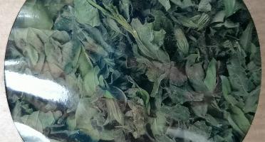 Les Jardins du Mas de Greil - Mélisse-menthe, Tisane Composée