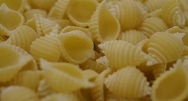 Lioravi, l'authentique pâte fraîche ! - Colis de Pâtes Bio Conchiglie 3x250g