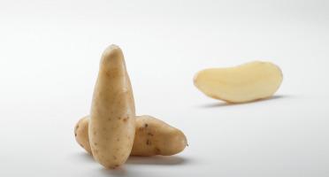 Maison Bayard - Pommes De Terre Ratte Du Santerre - 5kg