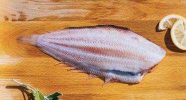 Côté Fish - Mon poisson direct pêcheurs - Filet De Sole 300g