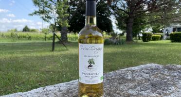 Vignobles Fabien Castaing - AOC Monbazillac Moelleux Prim'Origine 2017 - 6x75cl