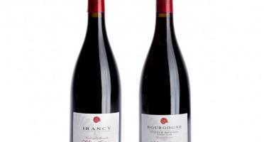 Domaine TUPINIER Philippe - Lot De 2 Vins Rouges : Côte D'auxerre Rouge 2015 Et Irancy Aoc 2017 - 2 Bouteilles