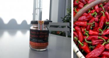 BIPER XOKOA - Poudre de Piment d'Espelette AOP Bio - Pot de 40g