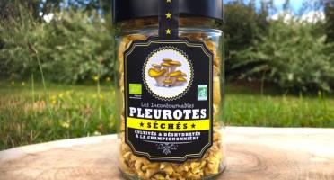 Les champignons du Loc'h - Pleurotes jaunes Bio séchés - 25g