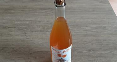 Gourmets de l'Ouest - Pur jus de Pomme pétillant du Mont Saint Michel
