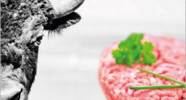 Bisons d'Auvergne - [SURGELÉ] 2 x Boites 10 Steaks Hachés de Bison Surgelés (100g)