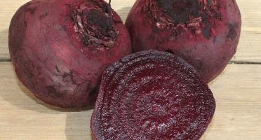 Au bon Jardinet - Betteraves Rouge Cuites À L Étuvée 450g